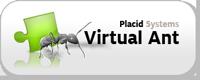Virtual Ant